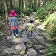 子どもと熊野古道