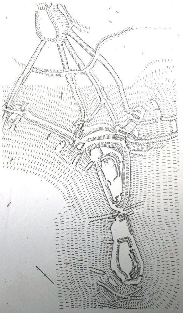 光城①/縄張図
