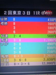 TS3Y0226.jpg