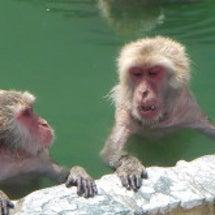函館市立熱帯動物園で…