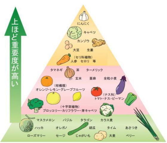免疫 力 を 高める 食べ物 免疫力を高める食事とは 健康長寿ネット