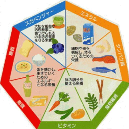 免疫 力 を 高める 食べ物 免疫力アップ食材編 ベスト10 - skmg.jp