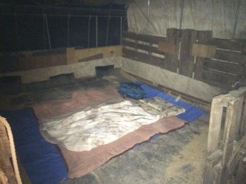 馬小屋で寝る