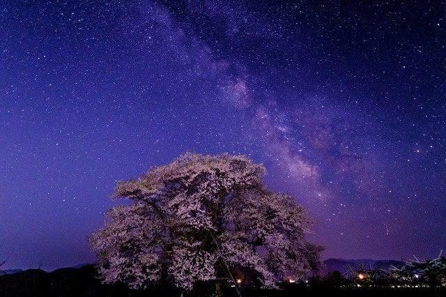 会津 福島 桜 天の川 天体写真