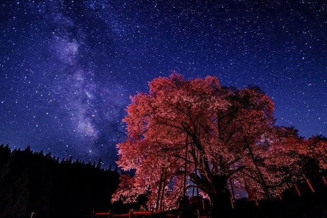 古殿町 越代の桜 山桜 銀河 星景写真
