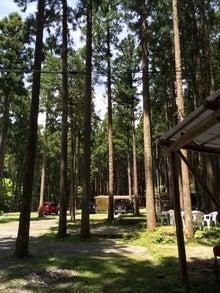 キャンプ森