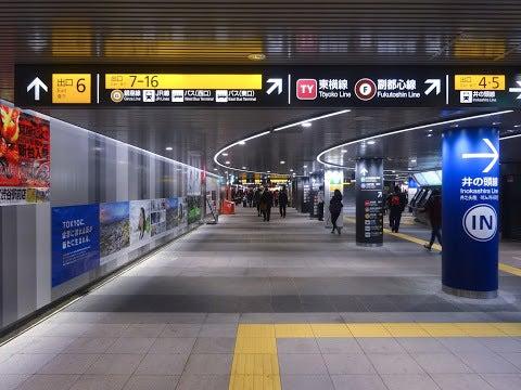 渋谷駅,半蔵門線,田園都市線〈著作権フリー無料画像〉Free Stock Photos