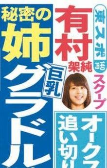 グラフィック0520002001.JPG