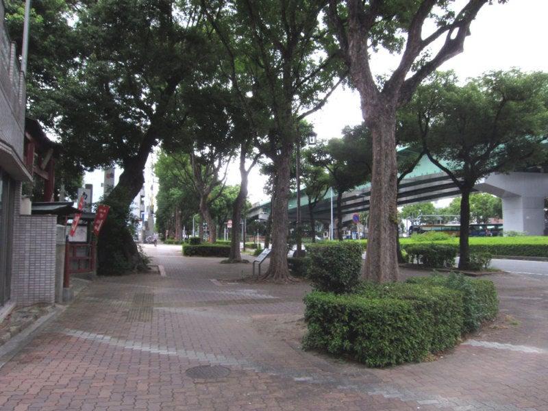 広井城/①目の前は高速道路