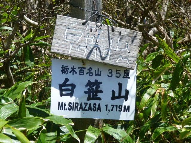 白笹山山頂