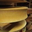 夏のチーズ作り
