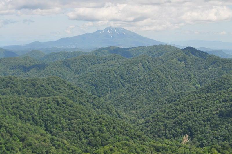 岩木山とブナッコリー