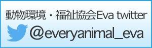 動物環境・福祉協会Eva twitter @everyanimal_eva