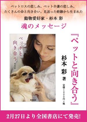 魂のメッセージ 「ペットと向き合う」 杉本彩 著