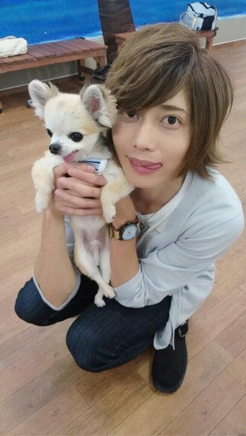犬とヽ(・∀・)ノ
