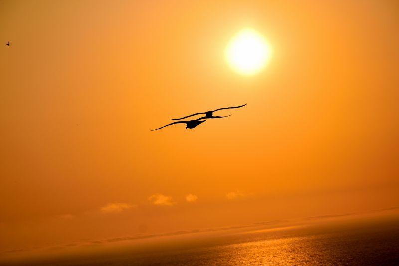 祝津 夕陽