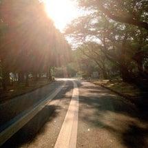明るい日陰を走ってく…
