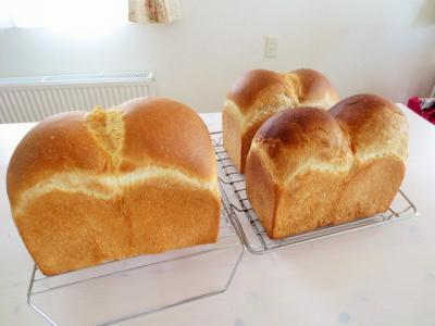 6月27日のパン教室
