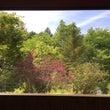 富士見町・茶房 きさ…
