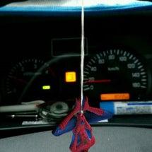 車の中に、蜘蛛が..…