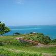 南の島のカメハメハ