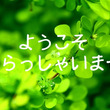 ◆最新ご予約状況◆【…