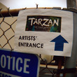 Tarzan the…