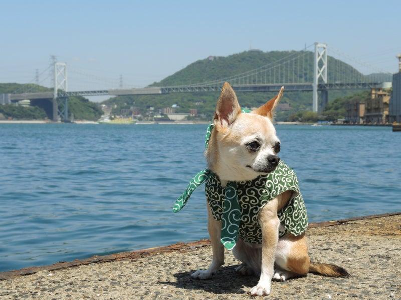 ふうこ門司港で関門橋をバックに