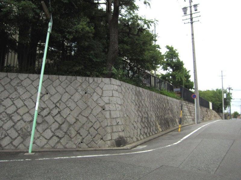 星崎城/③城塁