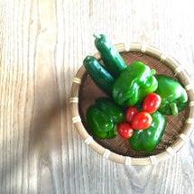 夏野菜が回りだした。