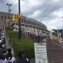 鷹の祭典in福岡ドー…