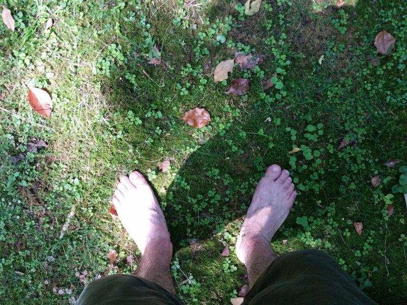 自分の足で立つ