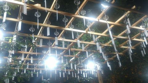 風鈴回廊3
