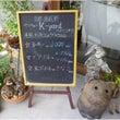 ワンコと暑い京都へ(…