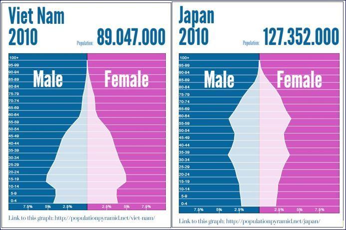 日本ベトナム人口ピラミッド