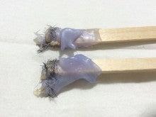 男性も女性も使用可能:ブラジリアンワックス脱毛セット:通販:美容室WOOP