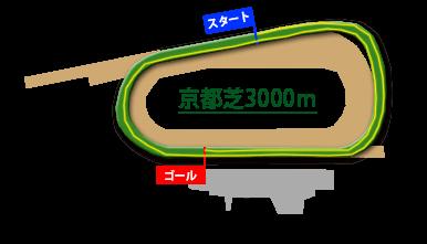 京都芝3000m