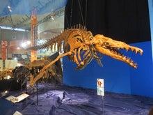 メガ恐竜展2015 3
