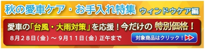 秋の愛車ケア【 ウィンドウケア編】バナー