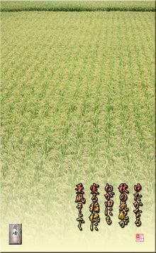 フォト短歌「実るわが田のお米」