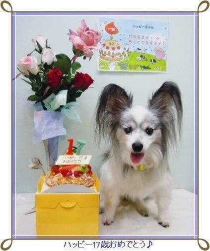 ハッピー17歳の誕生日