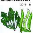 美味しい野菜の種子2…