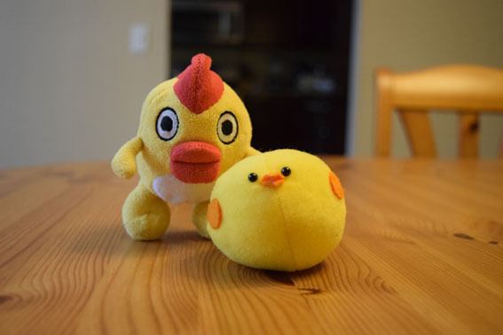 Sora n Chick-1