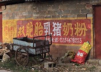 中国双子豚粉ミルク3