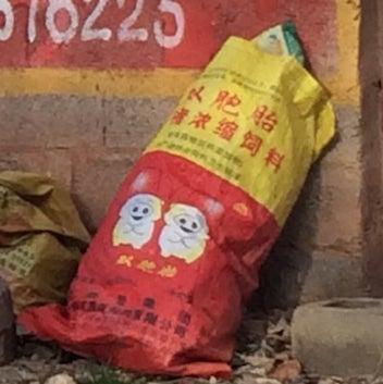 中国双子豚粉ミルク4