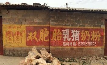 中国双子豚粉ミルク2