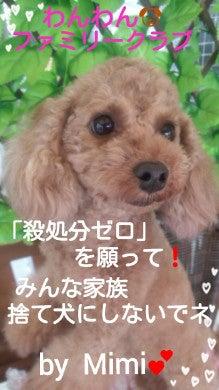 2015-08-13_17.29.42.jpg