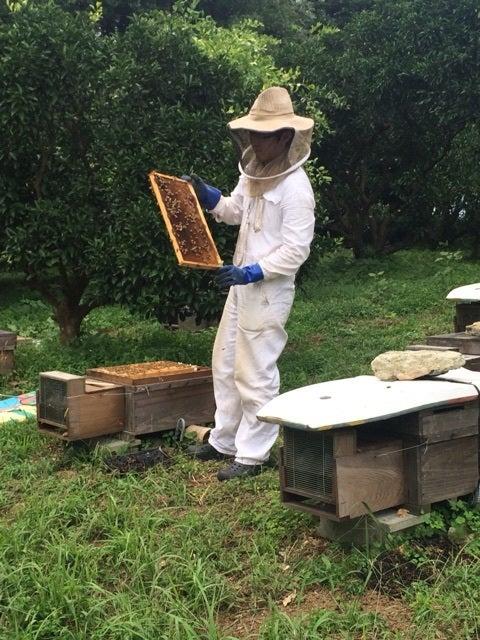 能古の島の養蜂農家にて