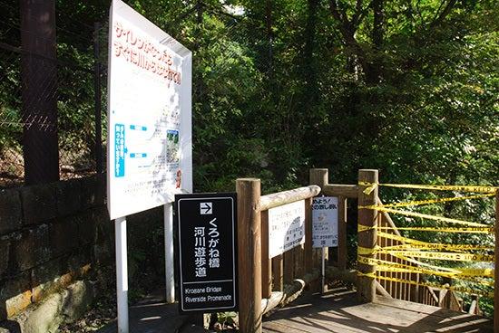ひばらさんの栃木探訪 鬼怒川温泉