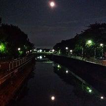 ミクとお月見。。